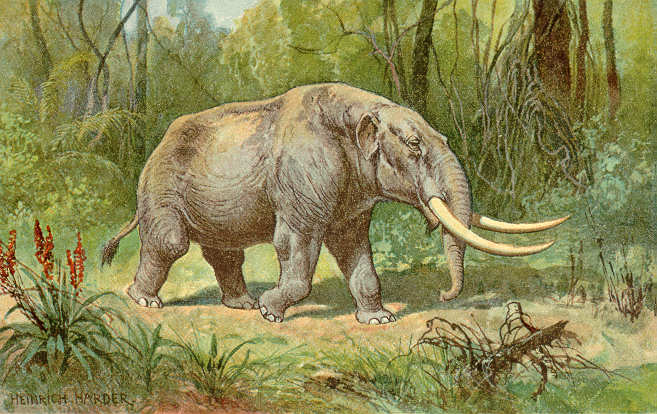 Mastodon_color