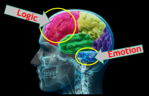emotional-ads-logic-vs-emotion