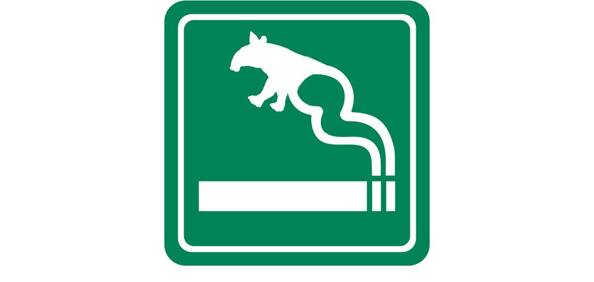 smoking tapir