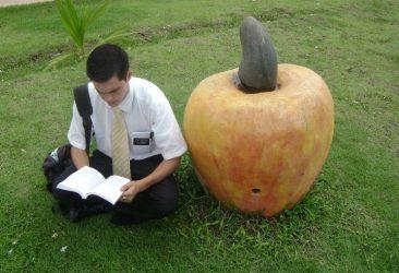 mormon missionary cult